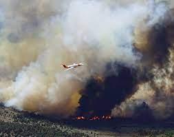 Tamarack Fire 2nd largest in Douglas ...