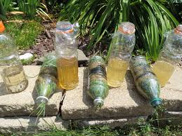 homemade water filter bottle. Then Homemade Water Filter Bottle