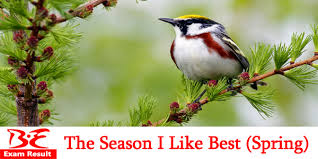 the season i like best essay or short composition be exam result the season i like best essay or short composition
