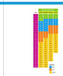 Dog Age In Human Years Chart Free Download