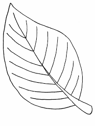 Small Picture Coloring Pages Of A Leaves Coloring Pages