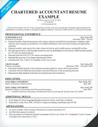Vibrant Resume Template Acca Cv Accountant Modern Templates