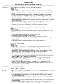 Professional Profile Accountant Resume Down Town Ken More