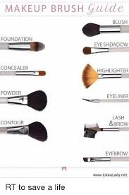 funny life and makeup makeup brush guide blush foundation eye shdadow concealer highlighter