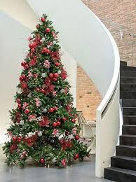 Christmas Tree Hire From Simply Plants Add That Extra