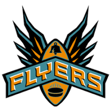 Flyers Logo Pictures Philadelphia Flyers Concept Logo Sports Logo History