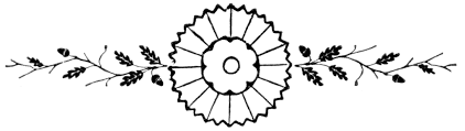 Image result for divider images