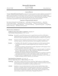 Hr Executive Resume Examples