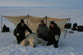 wildlife fisheries biology management zoology biology research in the arctic