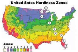 Guide For Landscape Pictures Of Landscaping Zone Chart