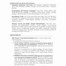 Hybrid Resume Template Inspirational Example A Bination Resume Free ...