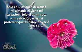 Christian Quotes In Spanish Best Of Christmas Bible Quotes In Spanish The Best Collection Of Quotes