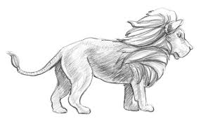 easy lion drawings in pencil. Modren Drawings Hereu0027s  And Easy Lion Drawings In Pencil M