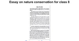 essay on nature conservation for class google docs