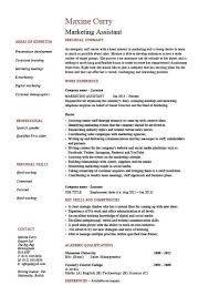 46 Marketing Assistant Job Description For Resume Systematic ...