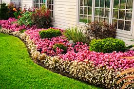 Add some color to your landscape by adding a flower garden. Consider  planting lush, low-maintenance perennials that will return each year with  magnificent ...