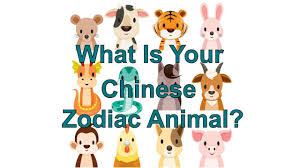 What Is My Chinese Zodiac Animal? Chinese New Year 2018 - YouTube