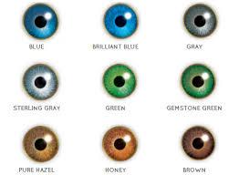 Contact Lenses Colour Chart 42 Unfolded Bausch Lomb Contact Lenses Colour Chart