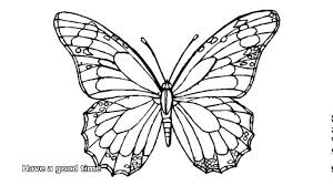 Butterfly Coloring Pages Youtube