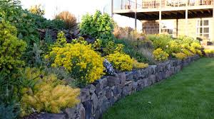 Small Picture Garden Edging Ideas Garden Design in Shrewsbury Designer