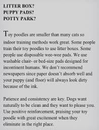 Toy Poodle Feeding Chart Your Toy Poodle