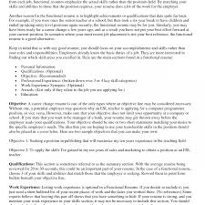 Summary Of Accomplishments Examples Sample It Professional Resume ...