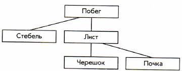 Контрольная работа по информатике класс 14 15 Контрольная работа №1 6 класс Вариант 2