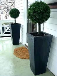 front door topiary live topiary trees for front porch front porch trees front porch front door