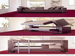 Sofa That Turns Into Bunk Beds Palmdino Com Makes