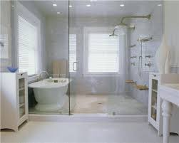 magnificent tub and shower enclosure gallery the best bathroom view in gallery