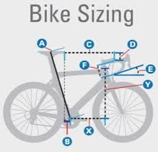 Bike Fitting Vs Bike Sizing Two Pivotal Aspects Of Cycling