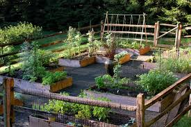 Small Picture Raised Bed Vegetable Garden Traditional Landscape New York