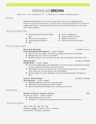 Beneficial Resume Sample Doc Sample Resume Doc New Unique Resume