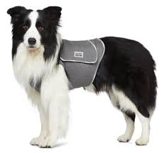 Image result for anti anxiety wrap for collies