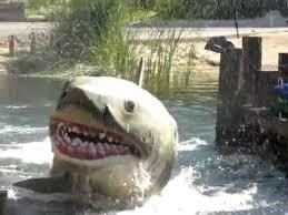 Shark Hollywood Youtube - Universal Pool Studios
