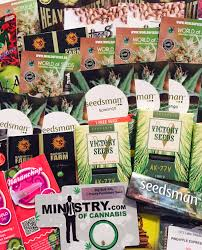 COMPETITION Win 70 Feminized Seeds and 5 T Shirts Seedsman Blog