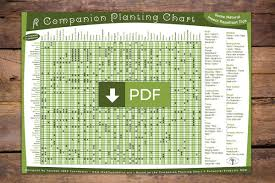 Vegetable Companion Planting Charts The Permaculture Research Institute
