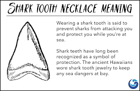 this gold shark tooth necklace will be your lucky charm while catching those big waves