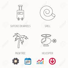 Download Palm Chart Palm Tree Shell And Helicopter Icons Suitcase On Wheels Linear