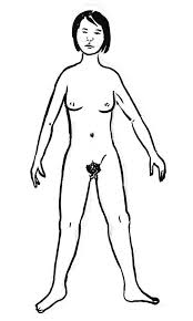 Outline Of A Female Human Body Coloring Pages Coloring Sky