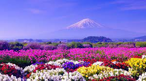 Spring Images Wallpapers (63+ best ...