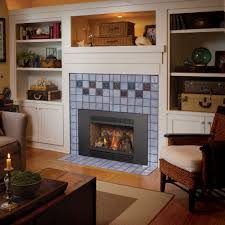view image 31 dvi gas fireplace insert