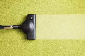 carpet cleaning in north branch