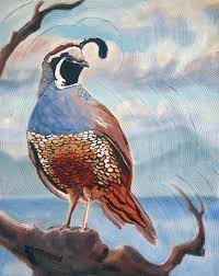 west coast quail 16 x 20 oil and acrylic on canvas board 475 with