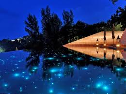 fiber optic lighting pool. fiber optic pool lighting | pinterest lights, garden and swimming pools