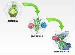 Evolve Roselia Evolve