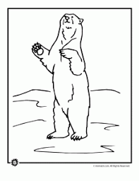 Small Picture Bear Coloring Pages Animal Jr