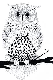 Black And White Owl By Zakariaseatworld