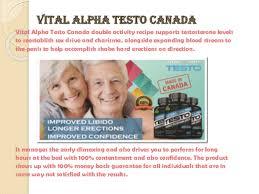 Image result for Vital Alpha Testo Canada images