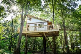 tree house pictures. Tin Shed Treehouse Tree House Pictures N